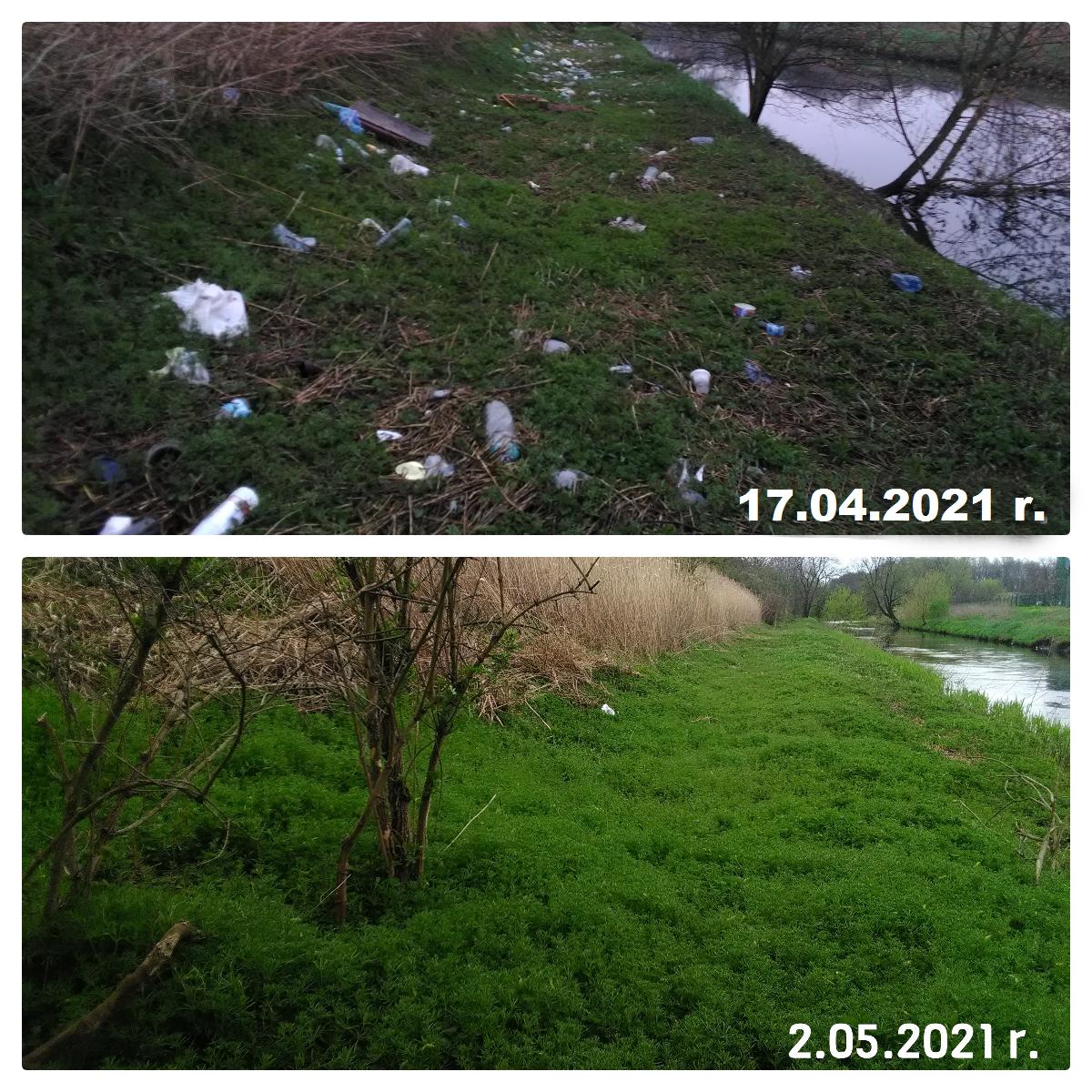 Uprzątnięty teren przy ulicy Portowej (dzielnica Łabędy)