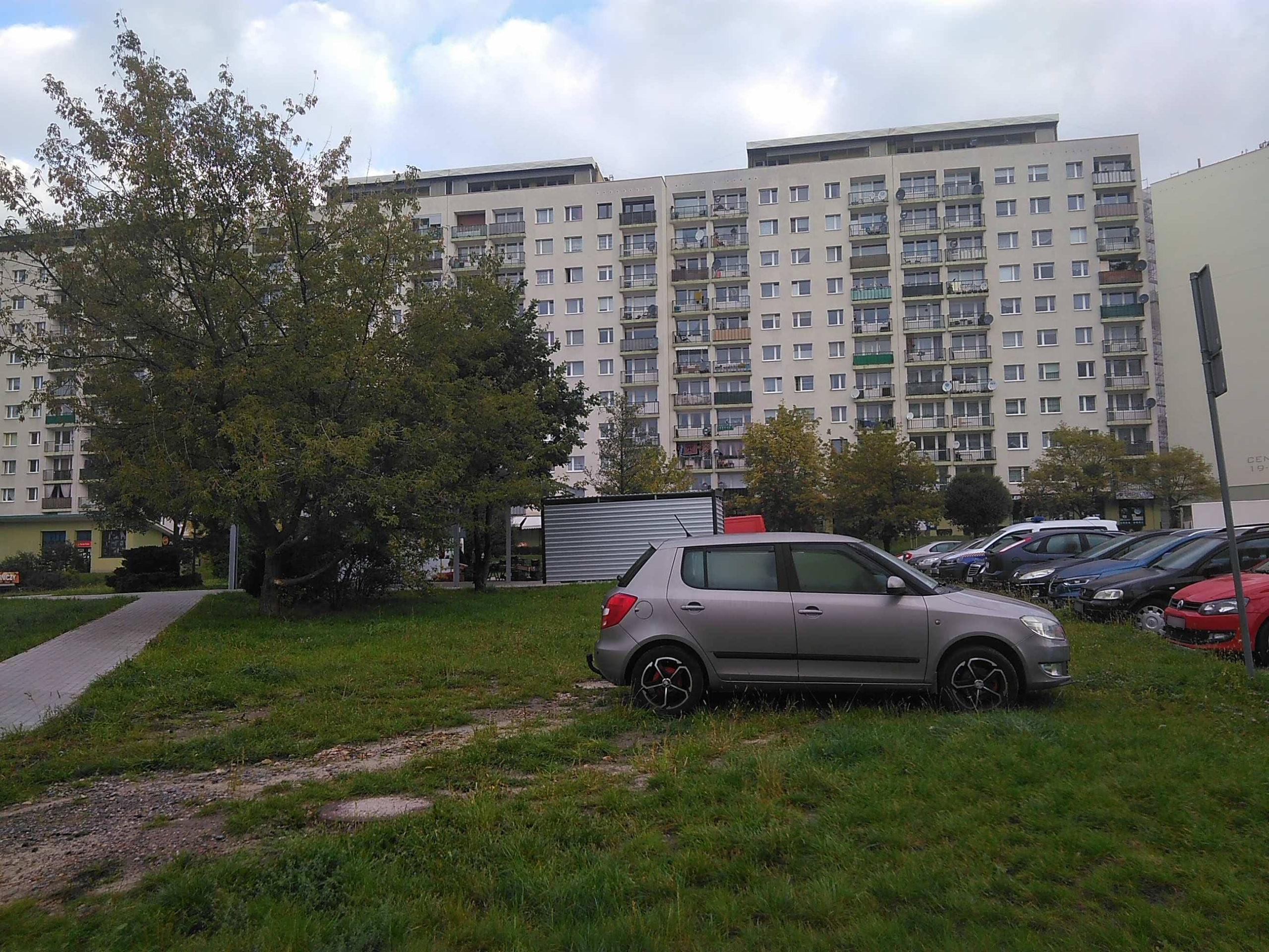"""""""Miszcz Parkowania"""" na zieleńcu…"""